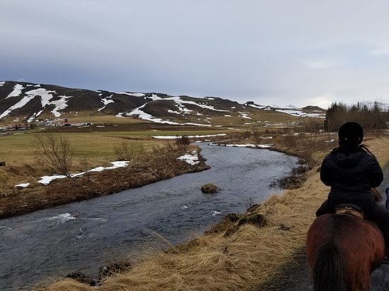Reiten in Island in Laxnes: Icelandic counrtyside