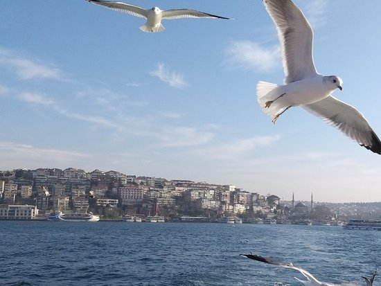Book Istanbul Tour
