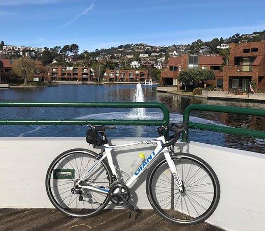 Rental Companies San Francisco: Golden Gate Rides Bike Rentals & Tours (San Francisco