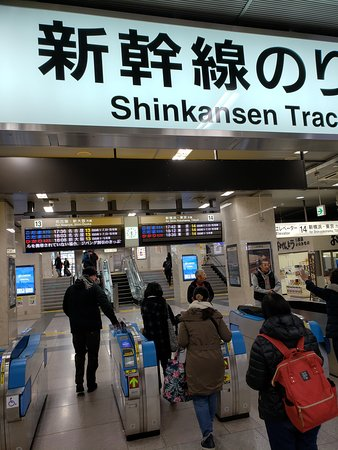 Mt Fuji, Hakone, Lake Ashi Cruise and Bullet Train Day Trip from Tokyo: Subway station to bullet train