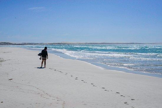 3-tägige private Tour von Adelaide nach Port Lincoln und Coffin Bay: Untouched beaches
