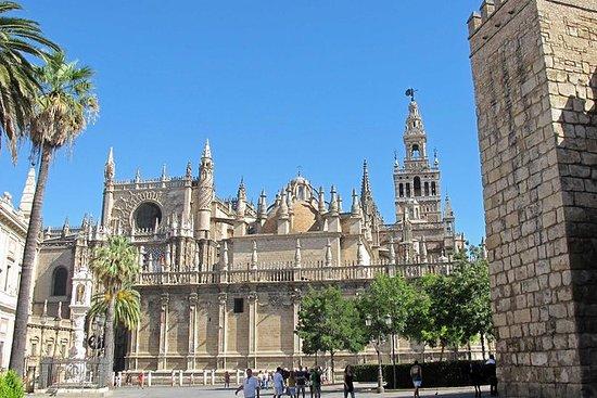 Visita al Alcázar y la Catedral de...