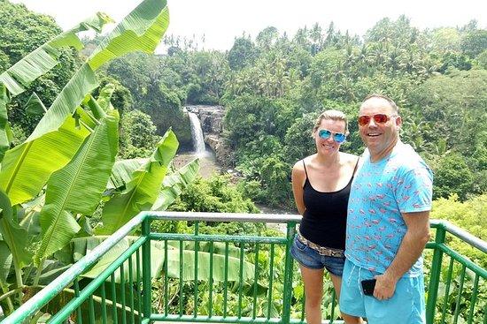ウブドのプライベートツアーのベスト:滝、モンキーフォレスト、ライステラスなど
