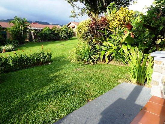 Jardin devant la terrasse de la chambre