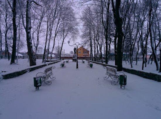 Hoshcha, ยูเครน: Зима в парке