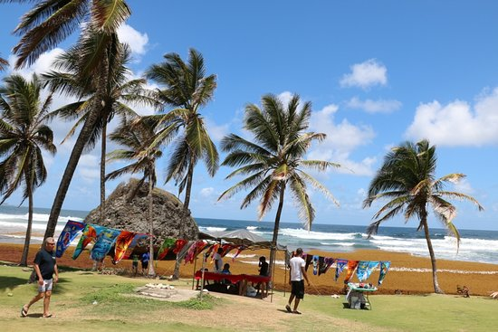 Bathsheba Beach 1