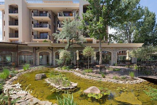 Lotus Lake in front of Lotus Restaurant