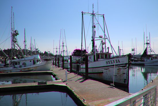 Newport's Historic Bayfront: Walking amidst the boats