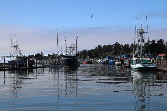 Newport's Historic Bayfront: Attractive!