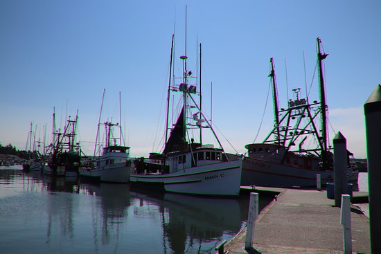 Newport's Historic Bayfront: All kinds of boats