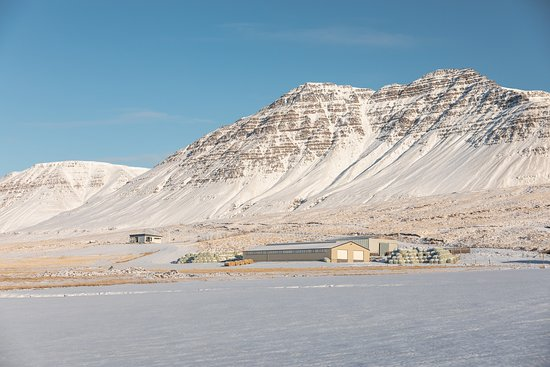 Skagafjordur, Islândia: The house is up on the hill!