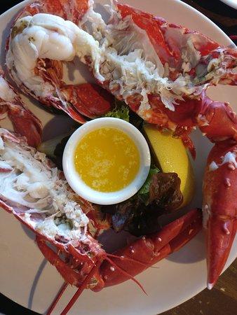 New Quay, Ireland: Lobster