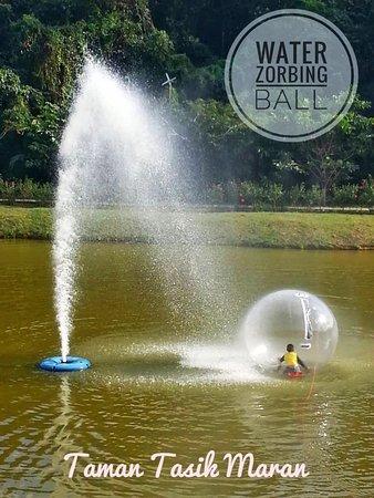 Maran District, Malaysia: Taman Tasik Maran - Water Zorbing Ball