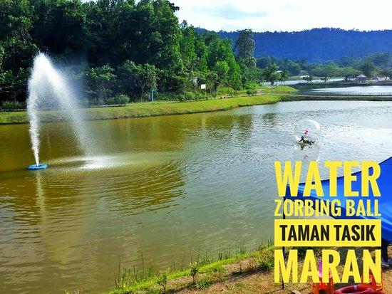 Maran District, Malaysia: Water zorbing ball at taman tasik maran