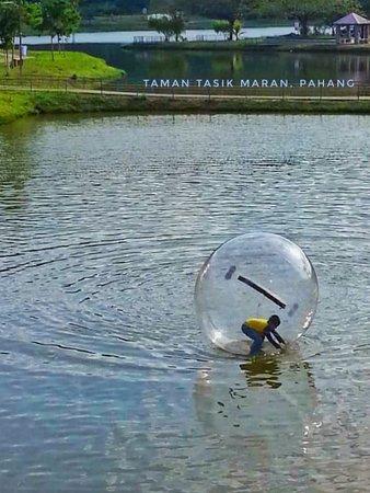 Maran District, Malaysia: Water zorbing ball