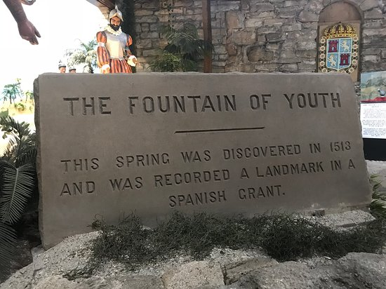Fountain of Youth Archaeological Park: X