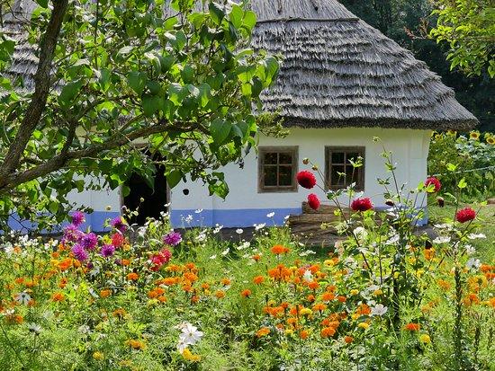 The Regional Museum of Folk Architecture and Life: 園内の植え込みも丁寧に手入れされていた。