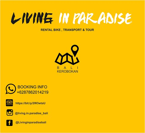Living In Paradise Rent Bike, Tour & Transport
