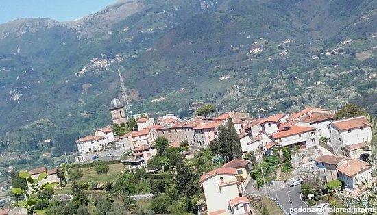 Planimetria Borgo dove c'era il Castello -  Layout Village Pedona, in the past there was a Castle