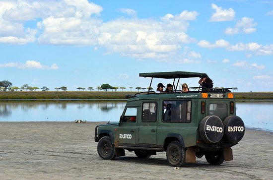East African Safari and Touring
