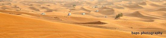 Dubai, Uni Emirat Arab: dessert safari