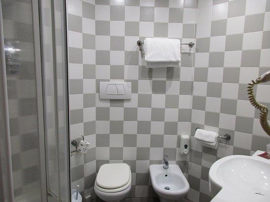 Hotel Roma Tor Vergata: kept very clean, plenty of towels