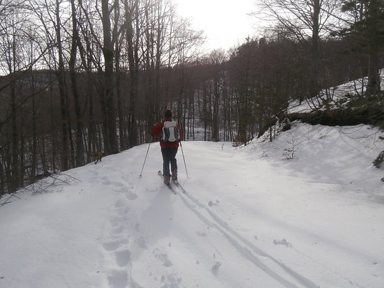 Paranesti, Greece: The forest roads in Greek Rhodope mountains are perfect during snow season for cross country skiing. Without steep slopes, it is easy and safe even for beginners to ski around the forest and enjoy exercising and nature at the same time.