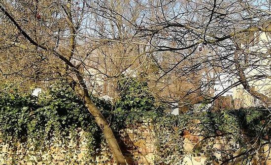 Zidovsky hrbitov