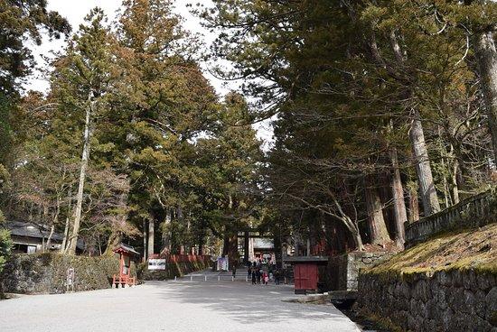 Nikko Tosho-gu: 参道入口。