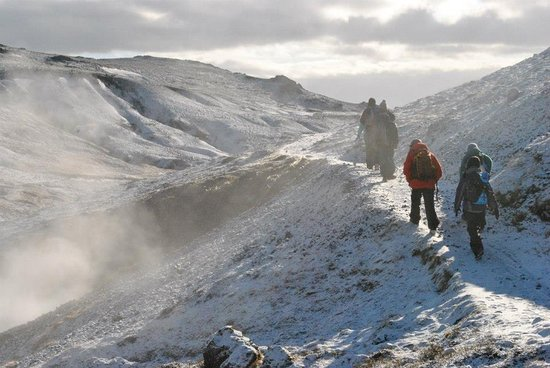 Educational tour around Iceland, learn about nature and culture with local guide: Fun hiking!