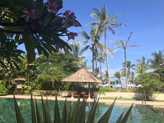 Ayodya Resort Bali: Бассейн Rama Shinto suite