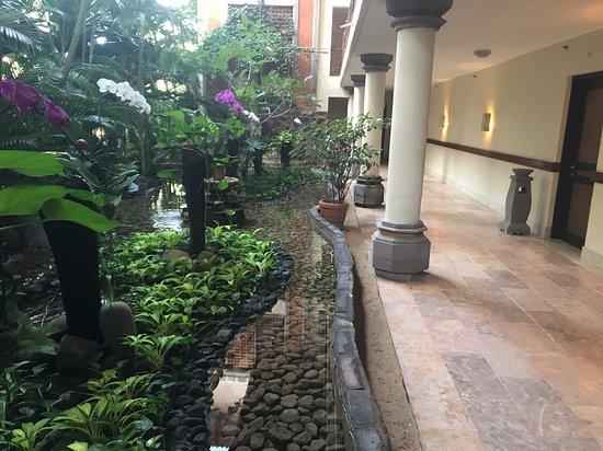 Ayodya Resort Bali: Садик перед Rama Shinto suites