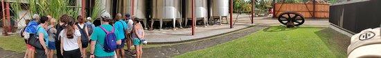 Riviere-Pilote, Martinique: Distillerie la Mauny