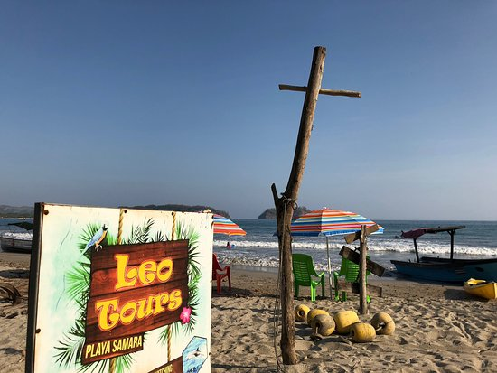 Leo Surf School &Tours