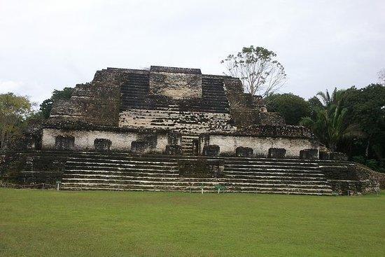 San Ignacio的Altun-Ha Maya遗址和狒狒保护区一日游