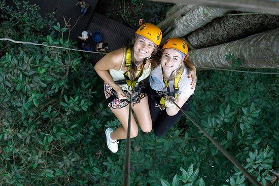 Chiang Mai Rainforest Canopy Zipline...