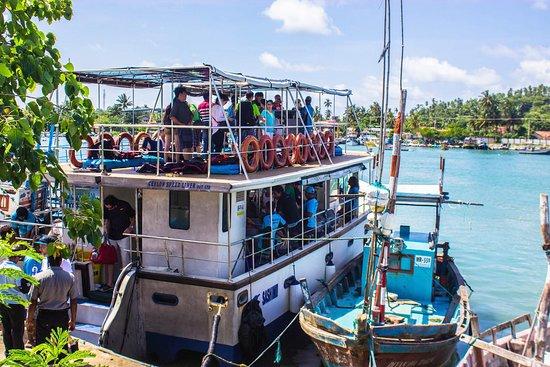 Reise Sri Lanka : Mirissa Whal watching time