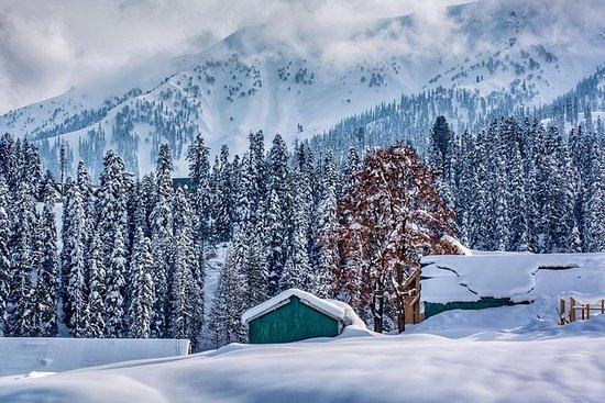 Privat 6 dager Royal Kashmir Tour...