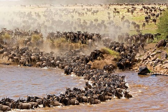 Safari aventure Maasai Mara de 3...