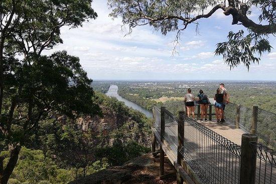 Kenguruer, utkikksposter og Koala...