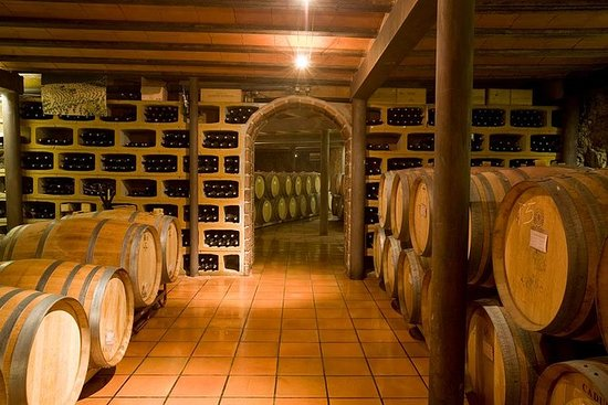 Catalonia Wine Tour
