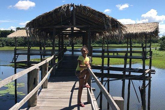 Amazon River Day Tour