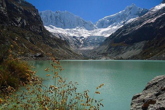 Trekking Lac Glacier Llaca dans la...