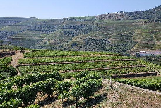 Tour privé dans la vallée du Douro de...