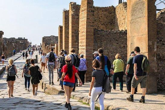 Pompeii: 2 hour walking tour with...