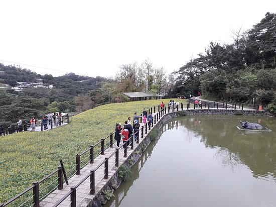 Zhangshu Trail