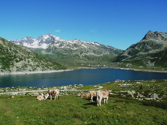 Lago di Montespluga, sullo sfondo l'omonimo villagio alpino e sulla destra la strada che sale al Passo dello Spluga che porta a Splügen, Grigioni , Svizzera.