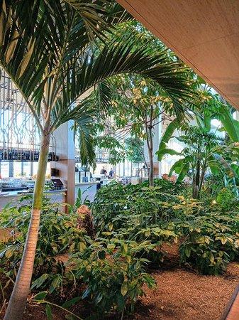 Jakarta Picture Of Hotel Jakarta Amsterdam Tripadvisor