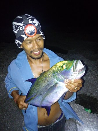 The King of The Sea Trip: bluefin