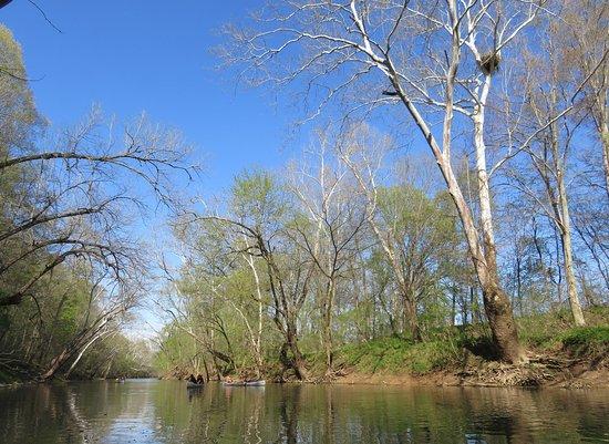 Old Mill Canoe Rental
